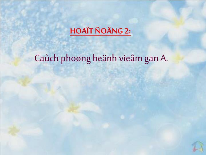 HOAT ONG 2: