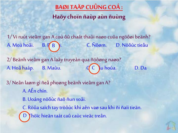 BAI TAP CUNG CO :