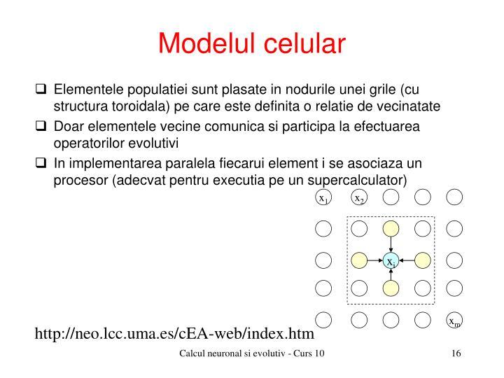 Modelul celular