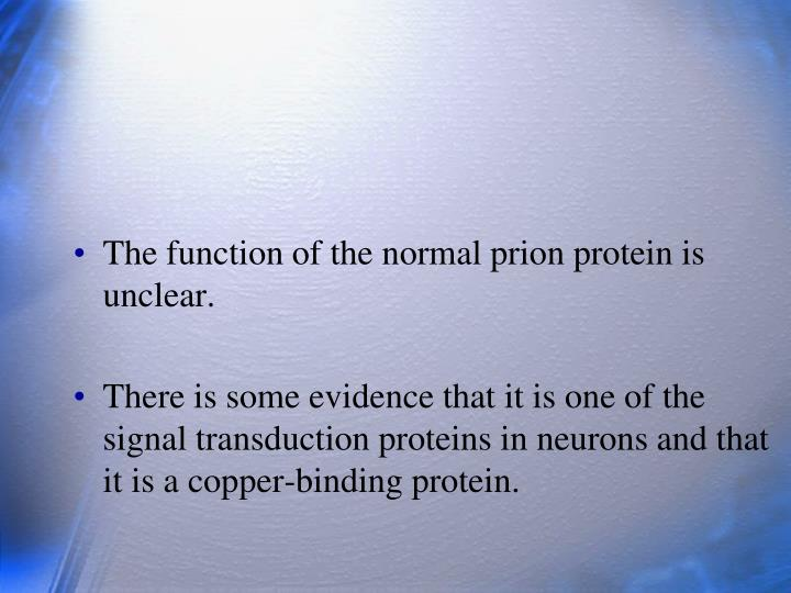 The function of the normal prion protein is unclear.