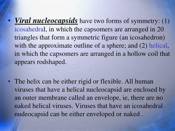 Viral nucleocapsids