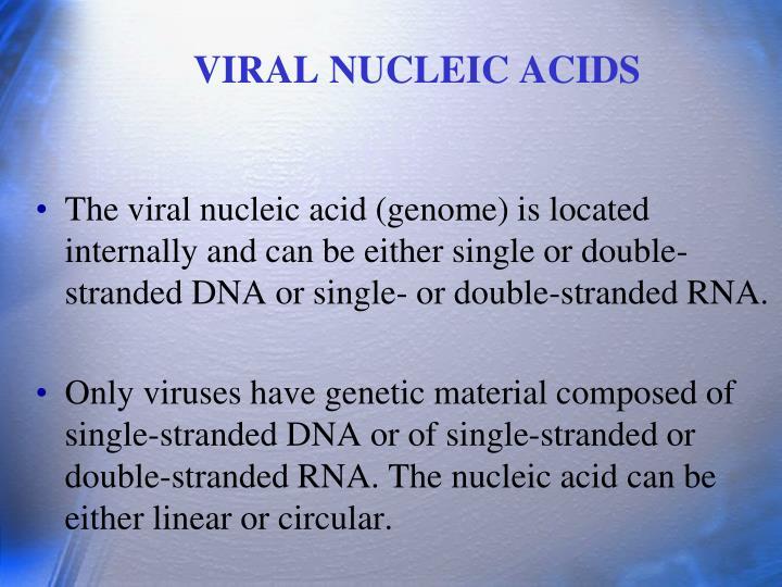 VIRAL NUCLEIC ACIDS