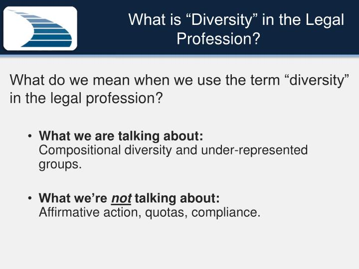 "What is ""Diversity"" in the Legal Profession?"