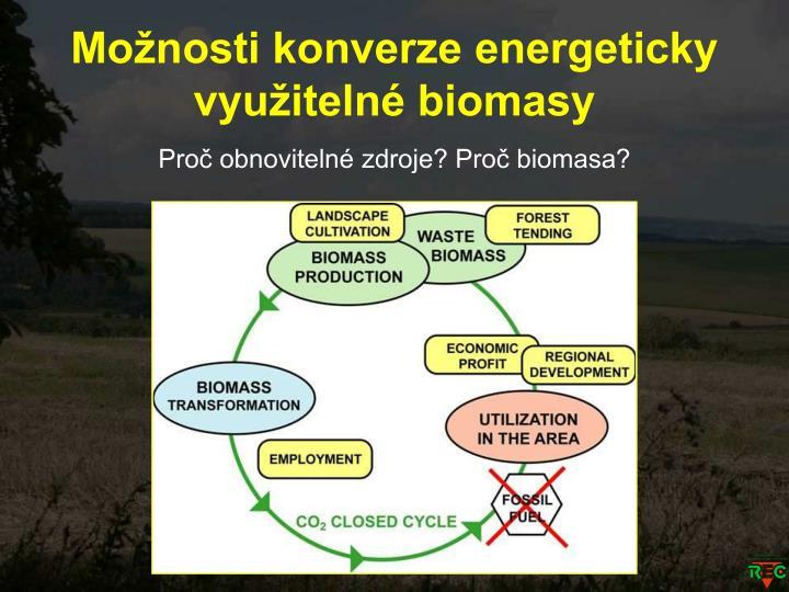 Možnosti konverze energeticky využitelné biomasy