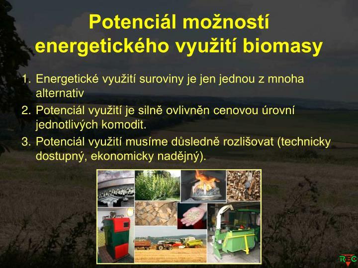 Potenciál možností energetického využití biomasy