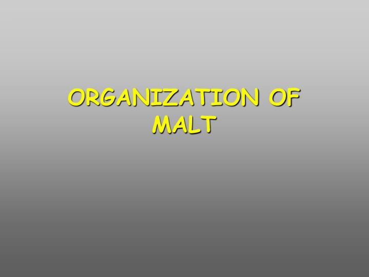 ORGANIZATION OF MALT