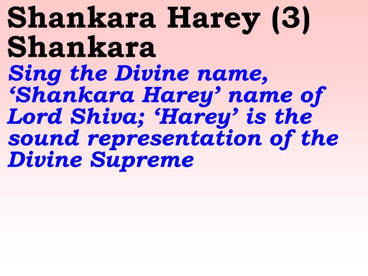 Shankara Harey (3) Shankara