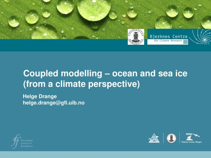 Coupled modelling ocean and sea ice from a climate perspective