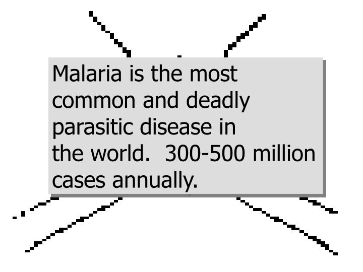 Malaria is the most common and deadly parasitic disease in                  the world.  300-500 mill...