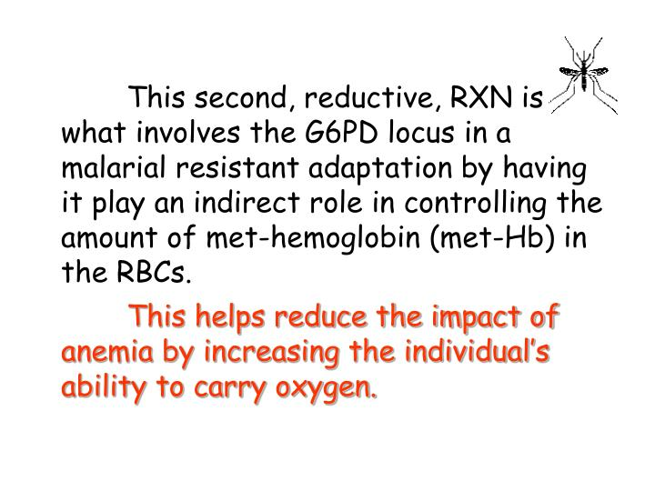 This second, reductive, RXN is what involves the G6PD locus in a malarial resistant adaptation by having it play an indirect role in controlling the amount of met-hemoglobin (met-Hb) in the RBCs.