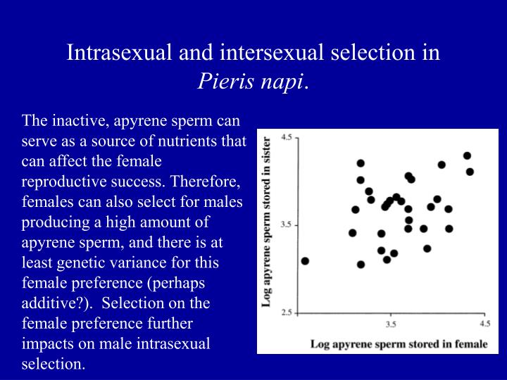 Intrasexual and intersexual selection in