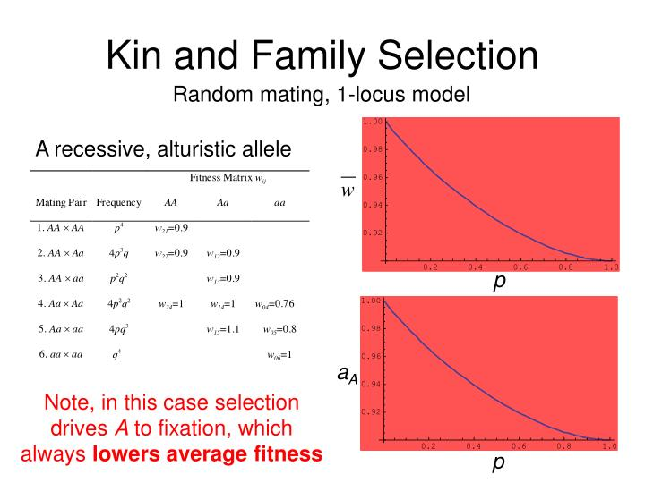 Kin and Family Selection