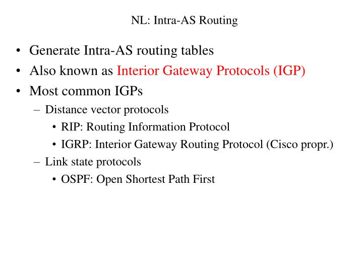 NL: Intra-AS Routing