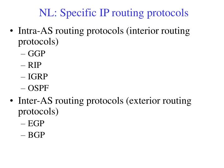 NL: Specific IP routing protocols