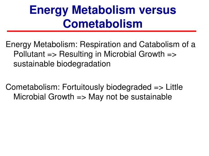 Energy Metabolism versus
