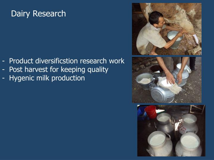 Dairy Research
