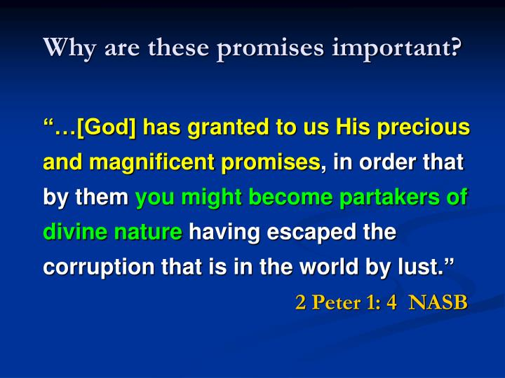 Why are these promises important?
