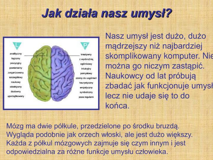 Jak działa nasz umysł?