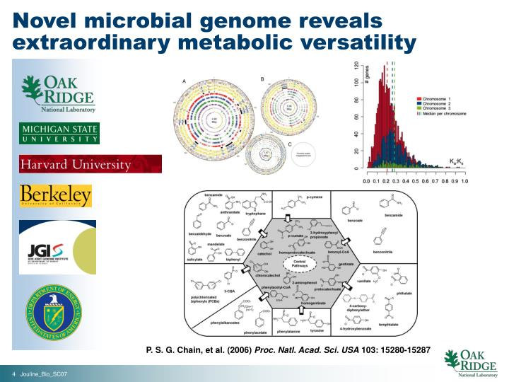 Novel microbial genome reveals extraordinary metabolic versatility