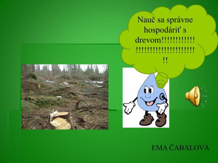 Nauč sa správne  hospodáriť s drevom!!!!!!!!!!!!!!!!!!!!!!!!!!!!!!!!!!!