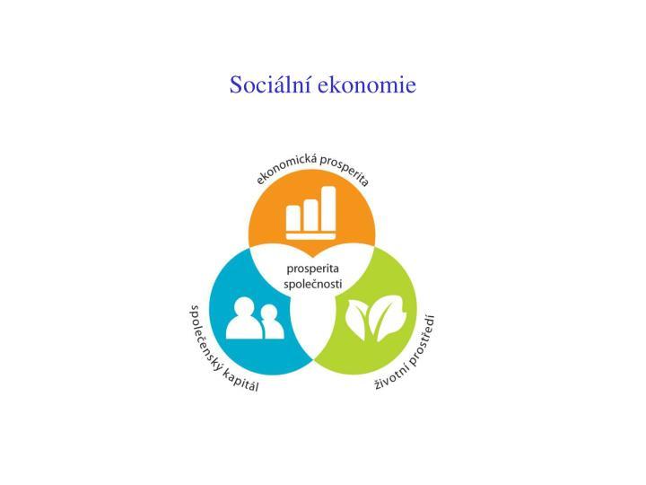 Sociální ekonomie