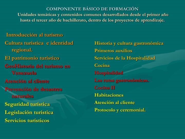 COMPONENTE BÁSICO DE FORMACIÓN