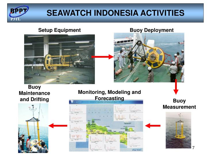 SEAWATCH INDONESIA ACTIVITIES