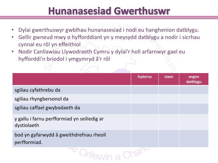 Hunanasesiad Gwerthuswr