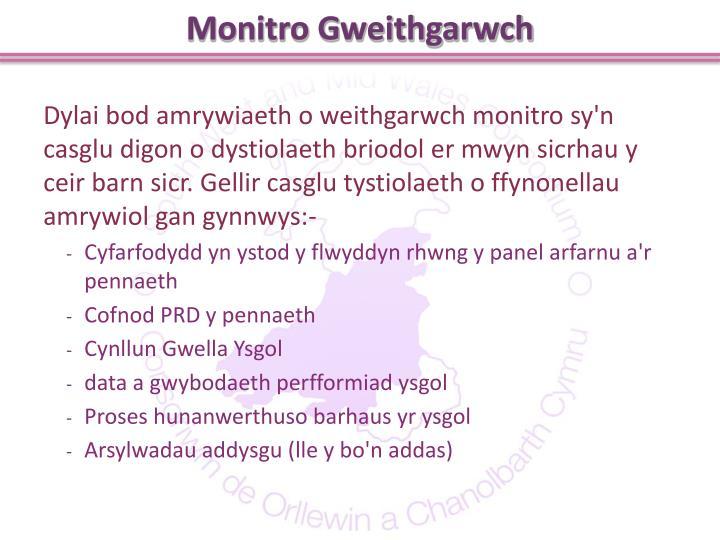 Monitro Gweithgarwch