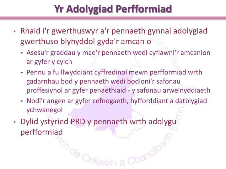 Yr Adolygiad Perfformiad