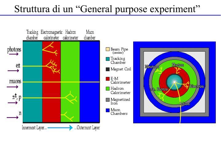 "Struttura di un ""General purpose experiment"""