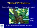 nested protections