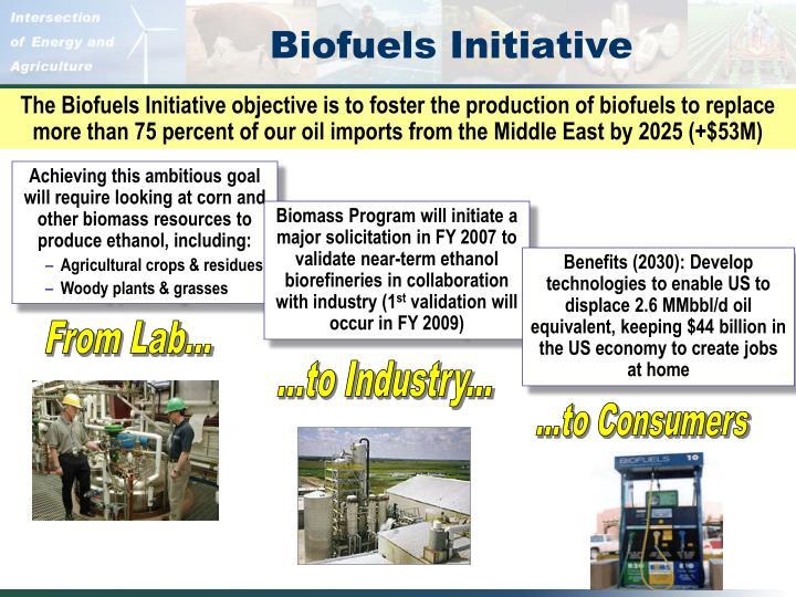 Biofuels Initiative