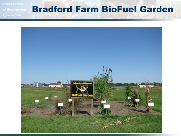 Bradford Farm BioFuel Garden