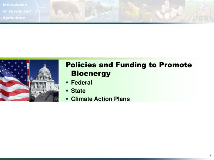 Policies and Funding to Promote Bioenergy