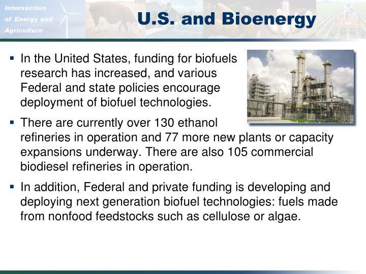 U.S. and Bioenergy
