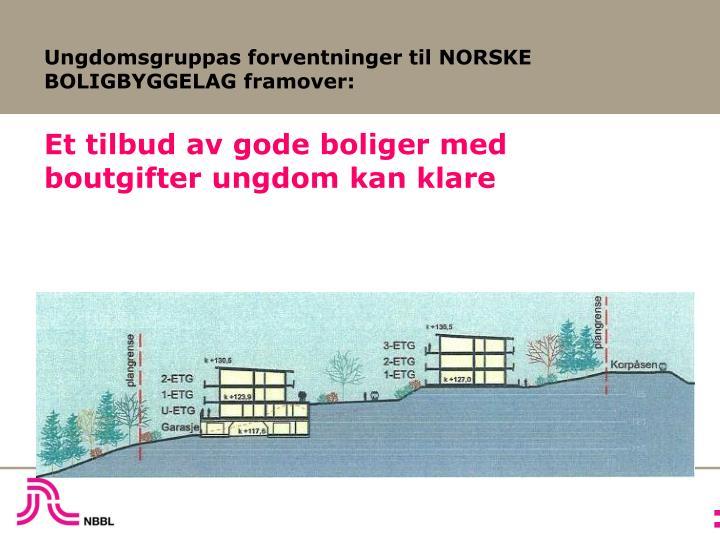 Ungdomsgruppas forventninger til NORSKE BOLIGBYGGELAG framover: