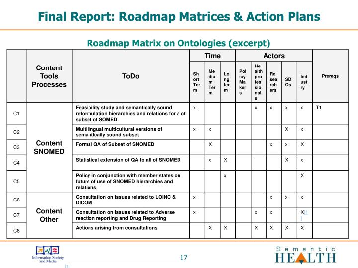 Final Report: Roadmap Matrices & Action Plans