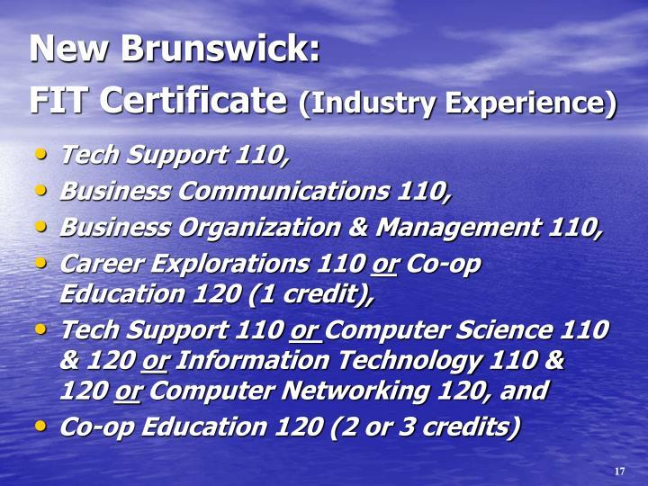 Tech Support 110,