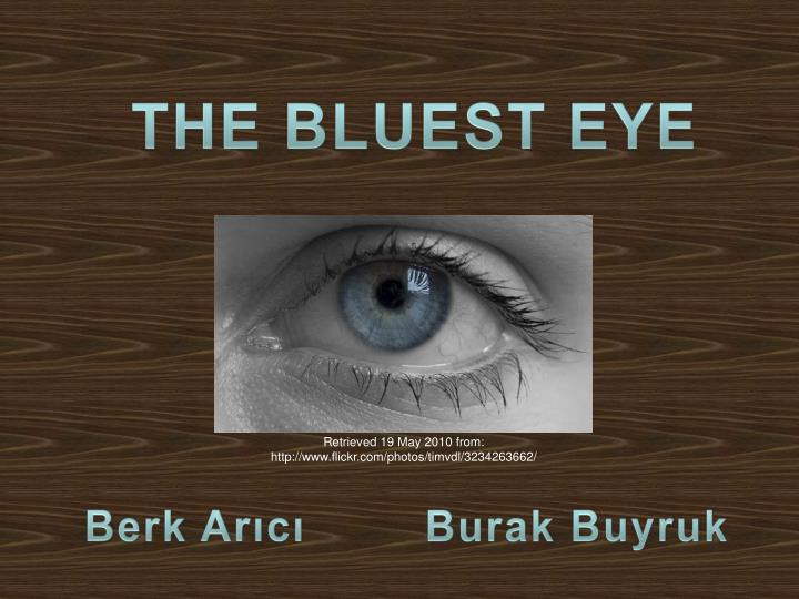 thesis essay bluest eye Essay on the bluest eye there are many themes that seem to run throughout this story each theme and conflict seems to always involve the character of she eliminates her sense of ugliness, which lingers in the beginning of the story, and when she sees that she has blue eyes now she changes her.