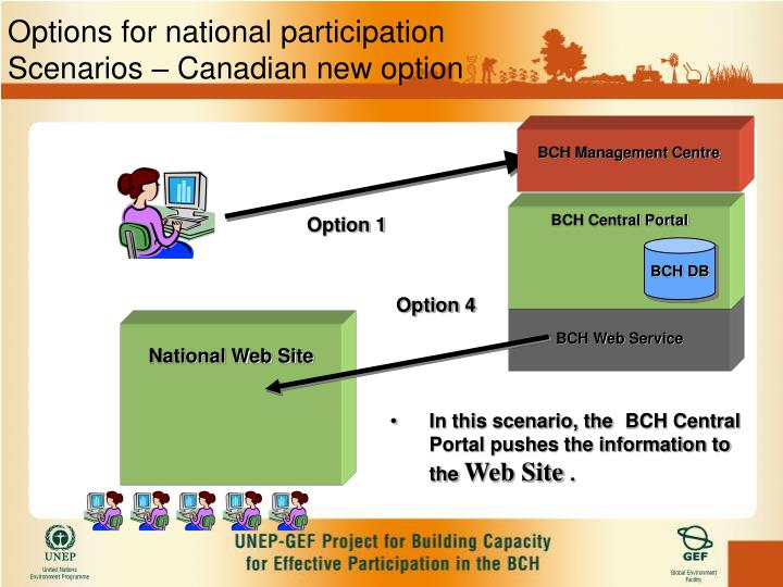 Options for national participation