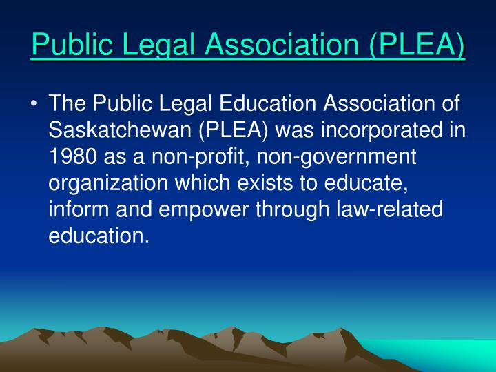 Public Legal Association (PLEA)