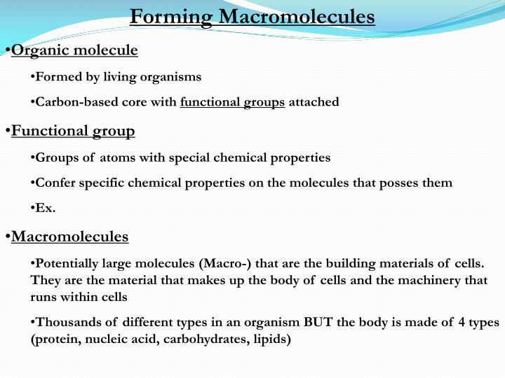 Forming Macromolecules