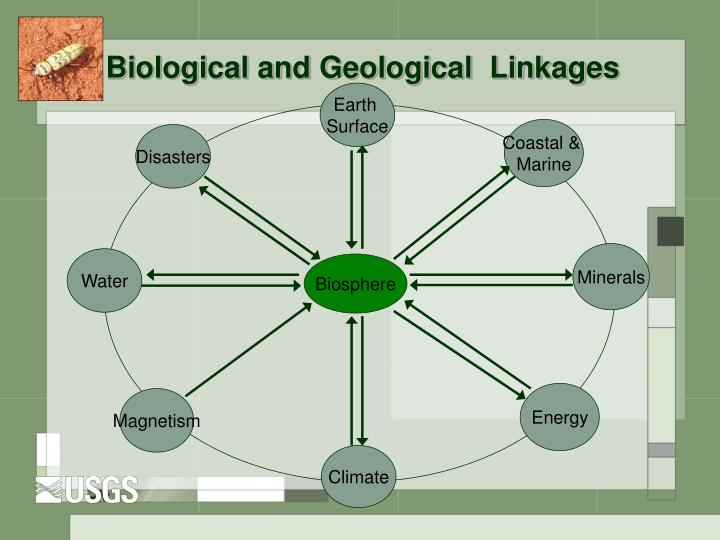 Biological and Geological  Linkages