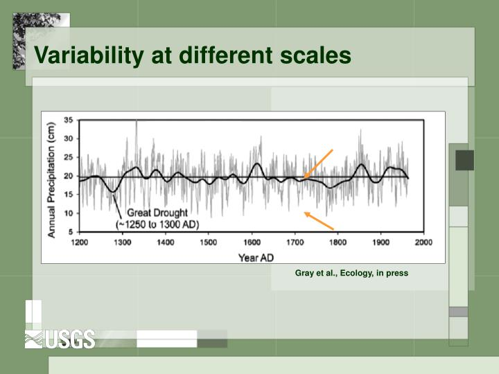 Variability at different scales