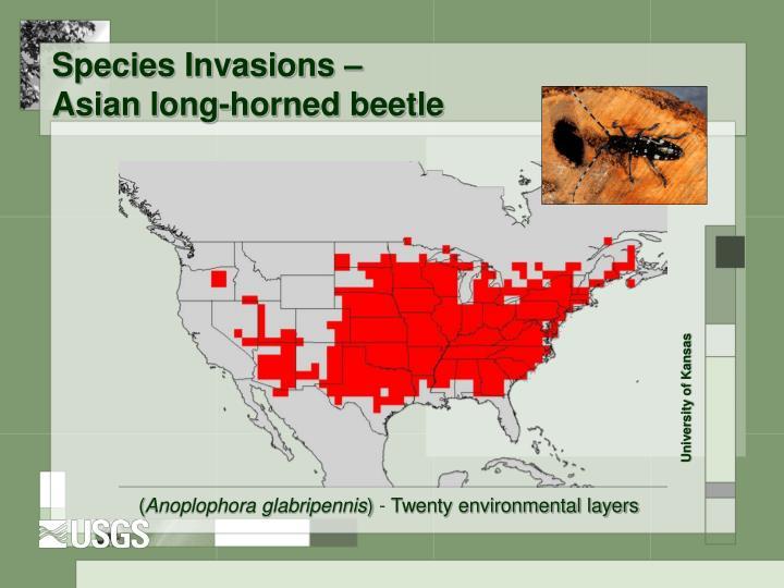 Species Invasions –