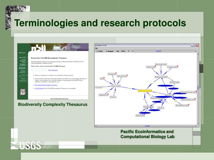 Terminologies and research protocols