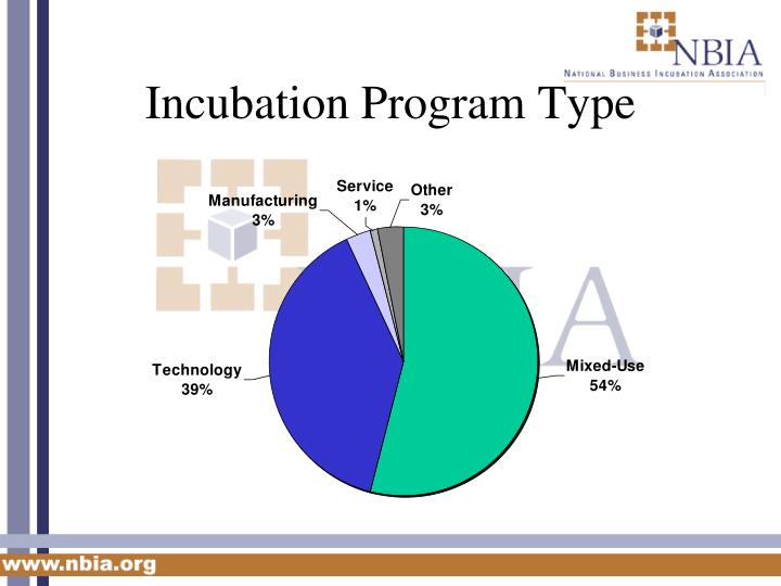 Incubation Program Type