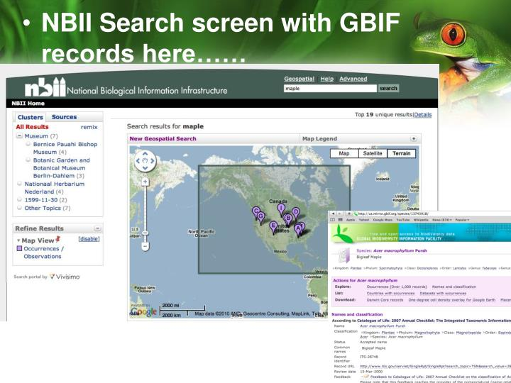 NBII Search screen with GBIF records here……
