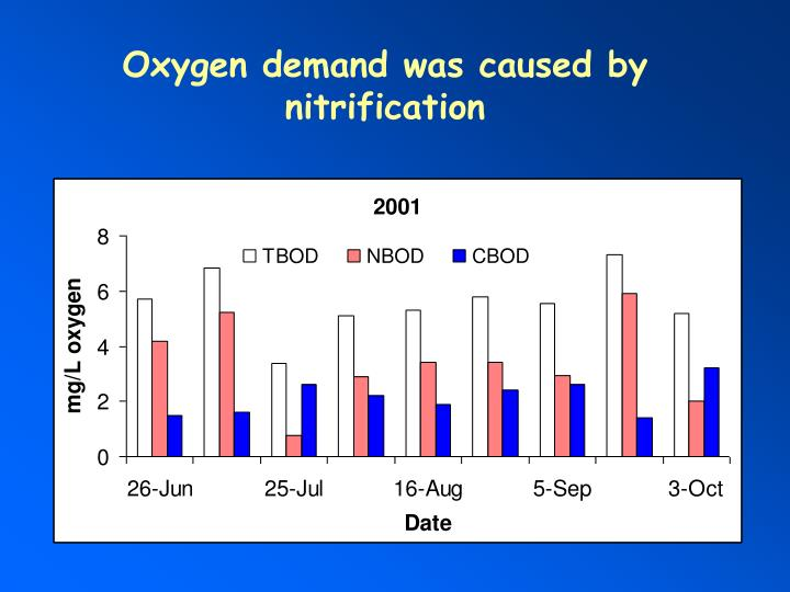 Oxygen demand was caused by nitrification